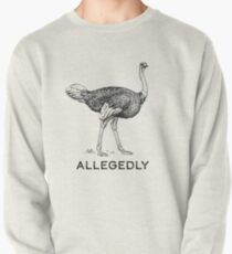 Allegedly Pullover