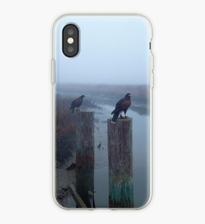 A Pair of Falconer's Harris's Hawks Hunting During a Falconry Hunt in the Wetlands of California  iPhone Case
