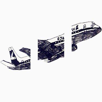 Plane cut by marksmagiceye