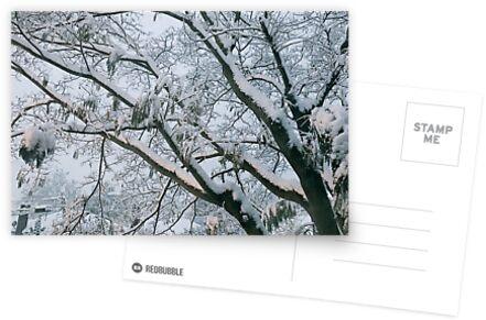 Winter Wonderland by evelynnlee