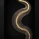 Gold Snake Skeleton over Black Canvas by Serge Averbukh