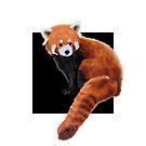 Panda by Blacklightco