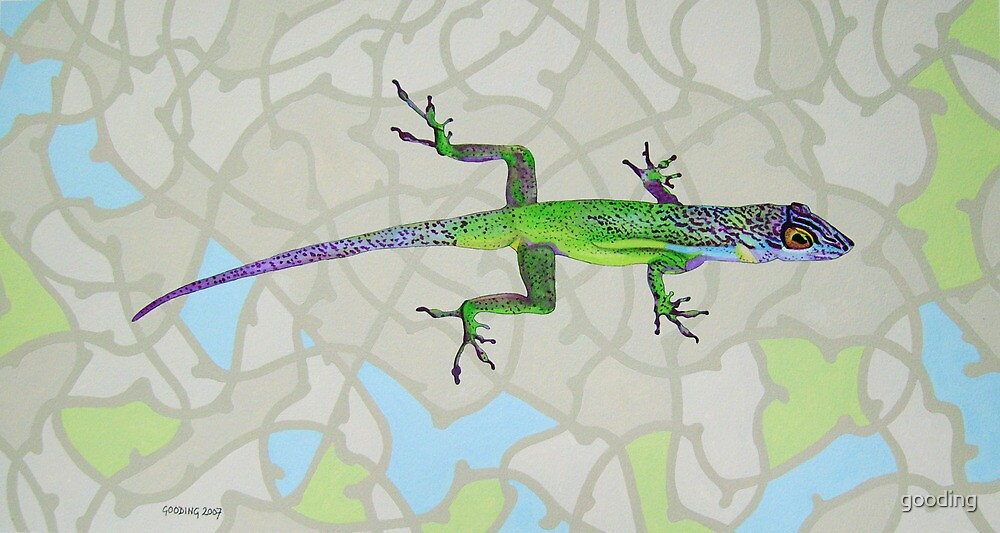 Lizard by gooding