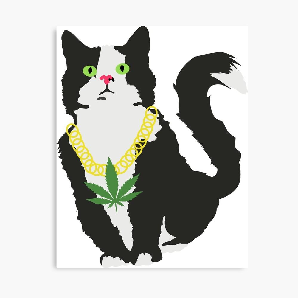 Gato stoner Lienzo