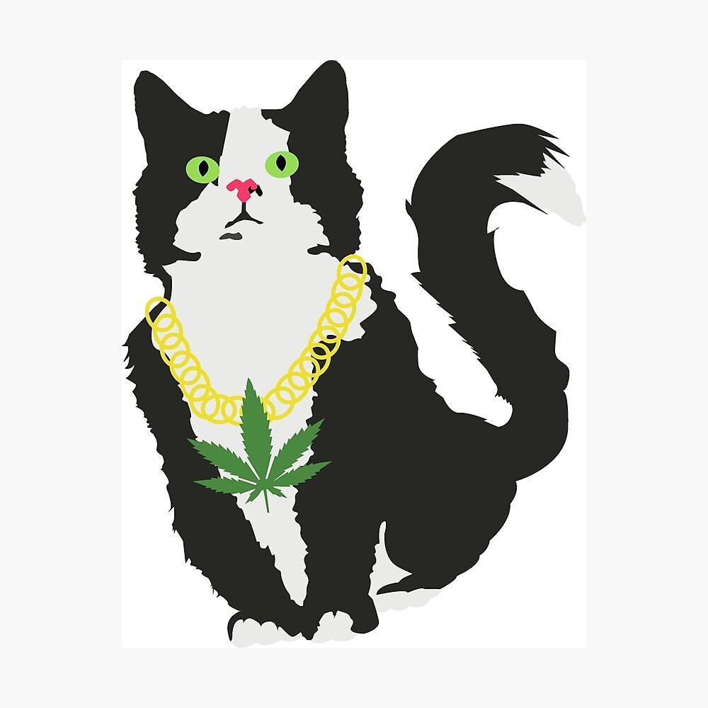 Gato stoner Lámina fotográfica