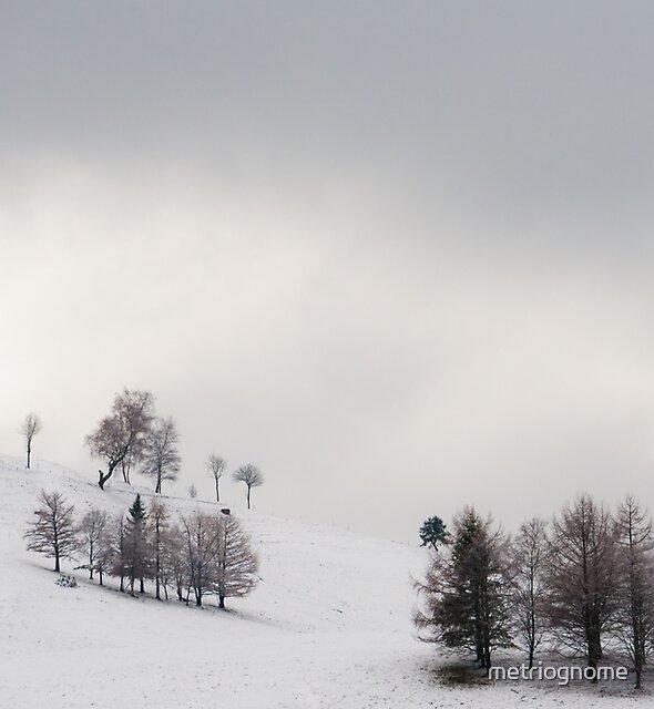The Hillside by metriognome