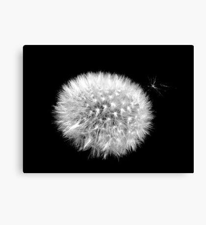 Satellite in Black and White Canvas Print