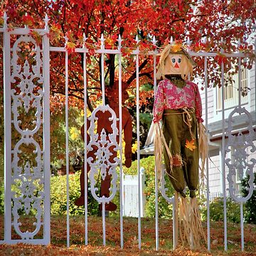 Fall Scarecrow  by DianaG