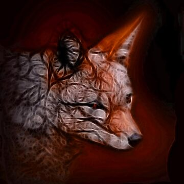 Fox spirit by LuciaS
