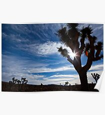 High Offroad Desert Above Panamint Springs Poster