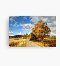 Autumn Splendor Yellow Take the Slow Road in Scotland Canvas Print