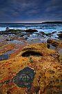 Coastline Treasures by Anton Gorlin
