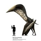 Hatzegopteryx by Liam Elward