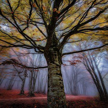 Tree View by dawnmvd