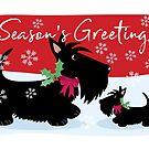 Season's Greetings ©BonniePortraits by BonniePortraits