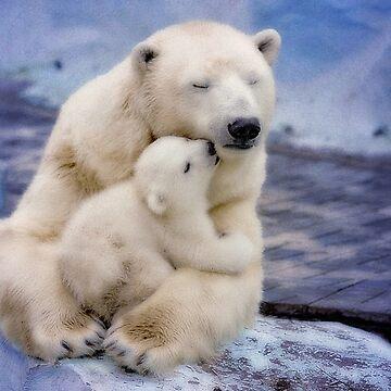 Polar Bear Love  by dawnmvd