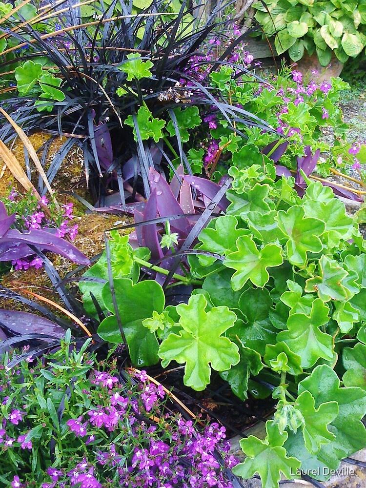 Green & Purple by LADeville