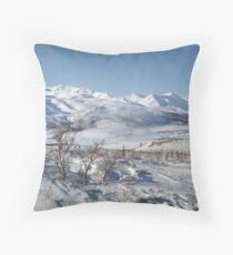 Creeping Ice - Dempster Highway, Yukon, Canada 2008 Throw Pillow