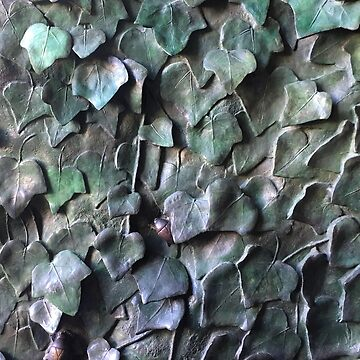 IVY LEAVES IN BRONZE by TOMSREDBUBBLE