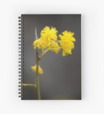 Dash of Yellow Spiral Notebook