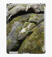On the Road to Bree iPad Case/Skin