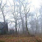 The Mystery House by Andrea Kabai