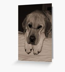Loney Pup Greeting Card