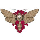 Death head hawk moth with red roses in retro vintage style. by features2018