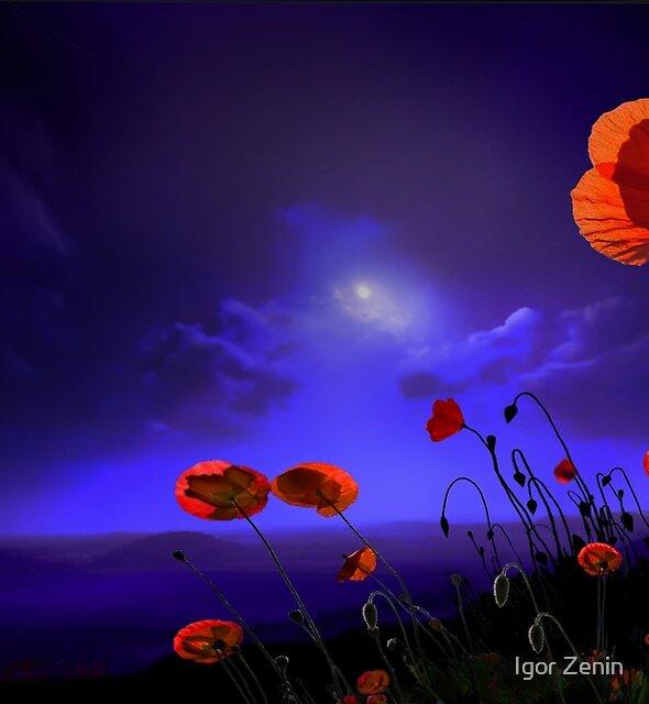 Poppies Blue by Igor Zenin