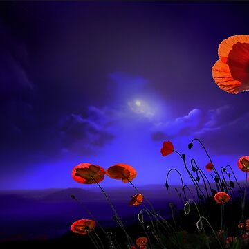 Poppies Blue by izenin