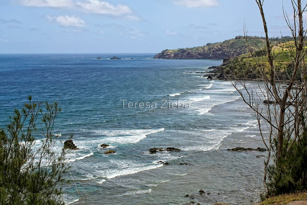 Honolua Bay, Maui, Hawaii by Teresa Zieba