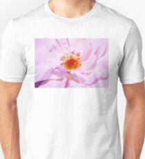 Bulgarian Oleaginous Rose, used in perfume industry T-Shirt