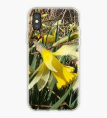 Field Of Daffies iPhone Case
