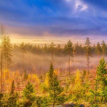 October Morning 14 by wekegene