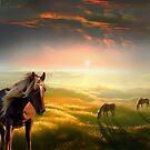 Golden by Igor Zenin