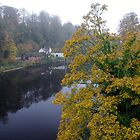 The River In Autumn by Francis Drake