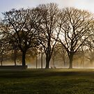 Misty Morning by Lynne Morris