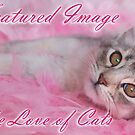 banner pink cloud by sarahnewton