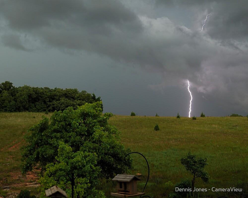 Backyard Strike by Dennis Jones - CameraView