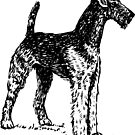 Airedale Terrier by PZAndrews
