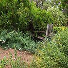 Garden Fence by CarolM