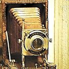 Say Cheese by Pat Moore