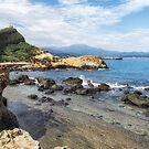 Yehliu geopark in Taiwan by aaronchoi