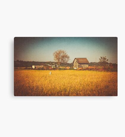A Place to Rest after Harvest Canvas Print