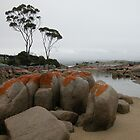 Seascape, Binalong Bay, Tasmania, Australia. by kaysharp