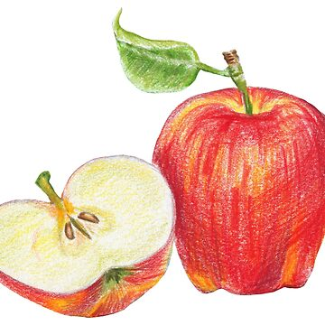 red apple, half red apple by lisenok