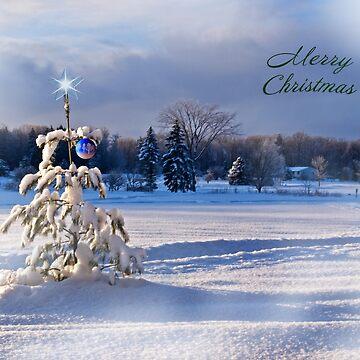 Christmas in a Snow Laden Field by kdxweaver