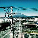 Mount Fuji from Shinkansen - Japan by IkuTree