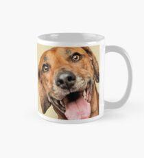 Curious and Cute Rhodesian Ridgeback Mug