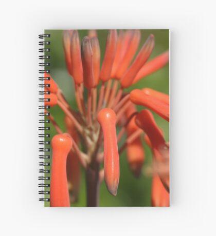 Finger nails Spiral Notebook